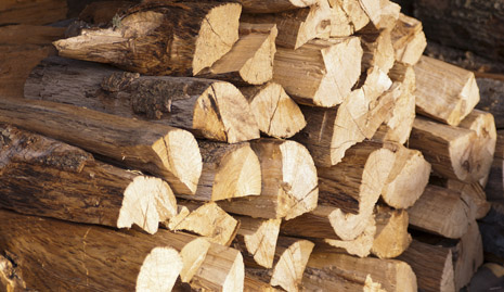 Firewood Logs in Amersham